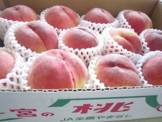 山梨県一宮の超高糖度の桃をいただきました。